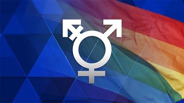40398950-transgender-symbol-diagrid-jpg
