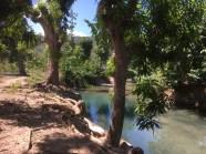 Rivière Salée (9)