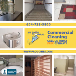 public area / school / office / building cleaning