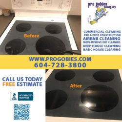 oven / glass electronic stove-top / burner cleaning service kitchen