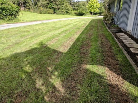 Lawn De-thatching