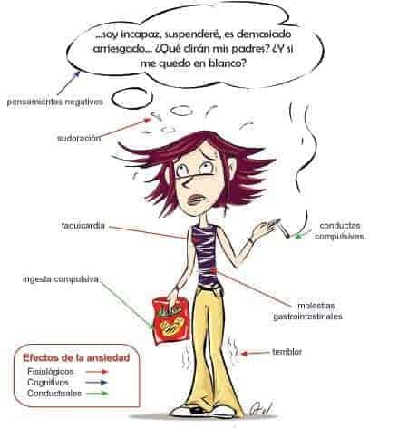 Algunos efectos de la ansiedad y el estrés-programadestres
