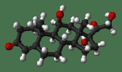 Cortisol - Hormona del estrés