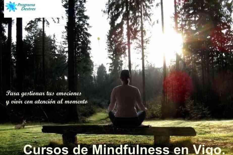 Mindfulness en Vigo programadestres
