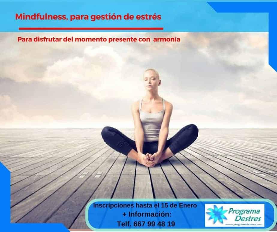 Curso Mindfulness Febrero 2017