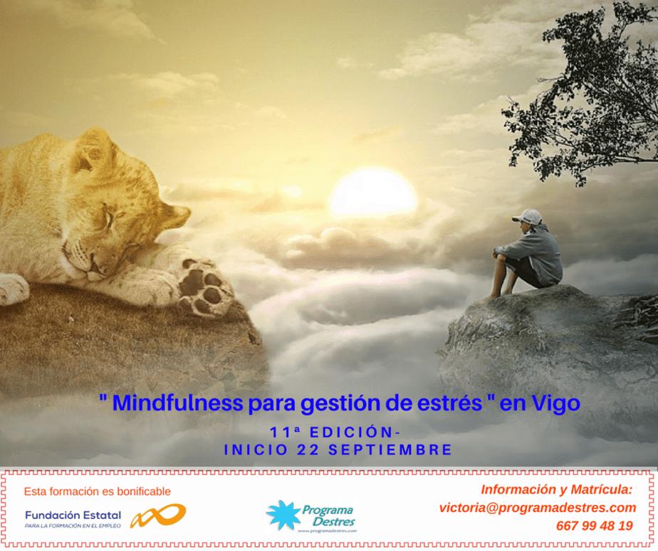 Curso Mindfulness en Vigo - Inicio grupo en Septiembre