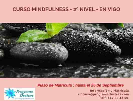 Curso Mindfulness Nivel 2