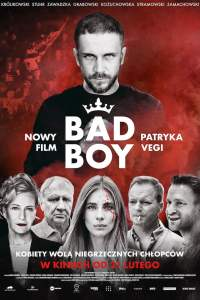 "Poster de la película ""Bad Boy"""