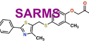 Steroid World: What SARM Drugs Are And Where They Came From