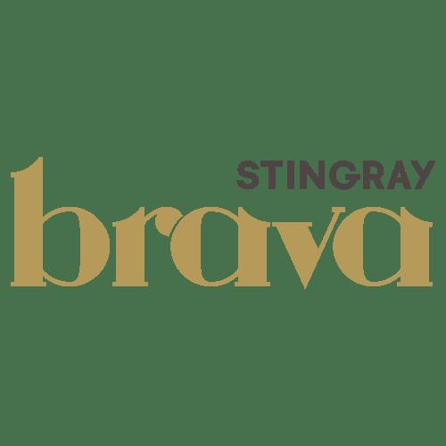 Chaîne Stingray Brava