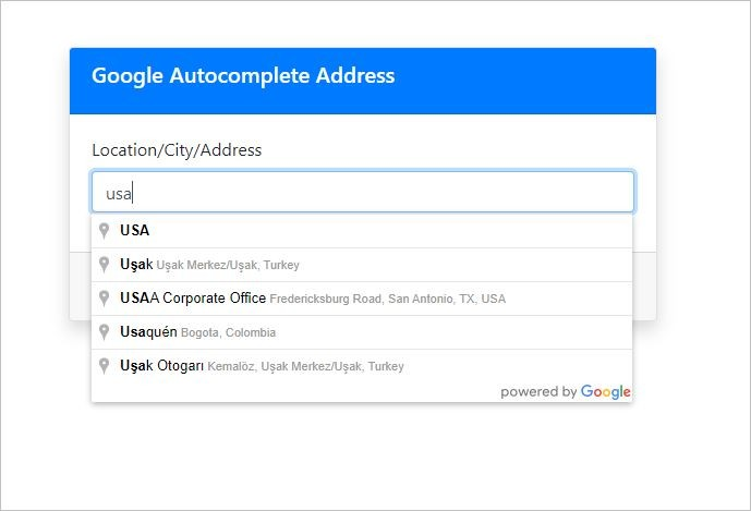 Google Autocomplete Address Result
