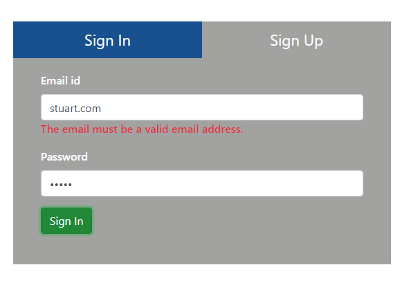 Email Validation Error Message