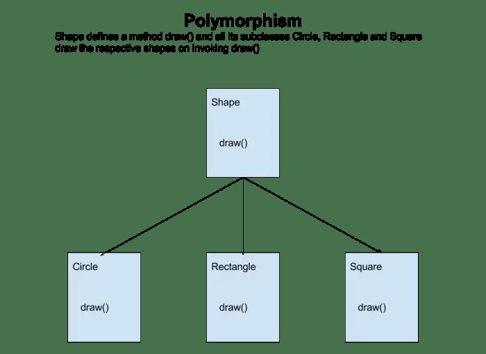 ploymorphism