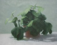 """Prayer Plant"", 2015, oil on canvas, 16 x 20"""