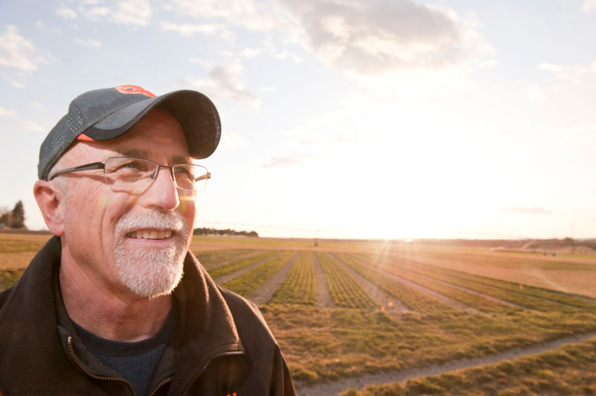 Phil Hamm, director of the OSU Hermiston Agricultural Research and Extension Center.