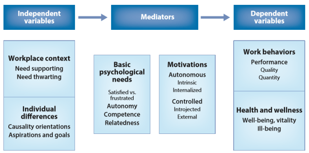 De zelfdeterminatietheorie in organisaties