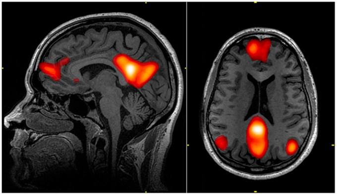 De voordelen van sociale cognitie versus de voordelen van een taakgerichte focus
