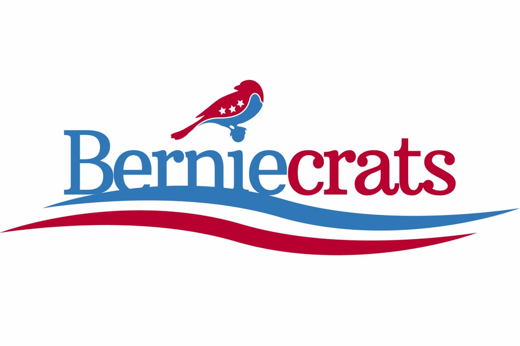 The Top 12 Berniecrats Running in 2016