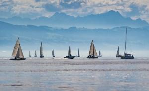 sail, sailing boats, wind