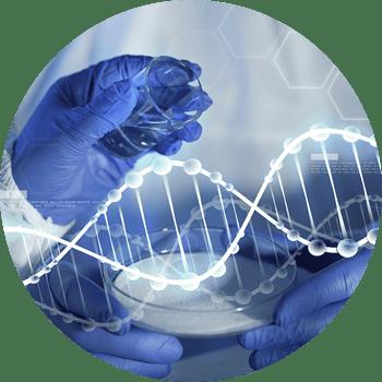 Science Behind Full Head Bonding | Pro Hair Labs