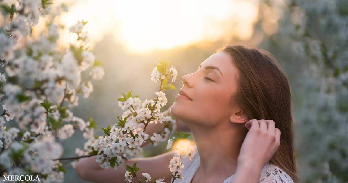 Scents Trigger Strong Feelings From Memories