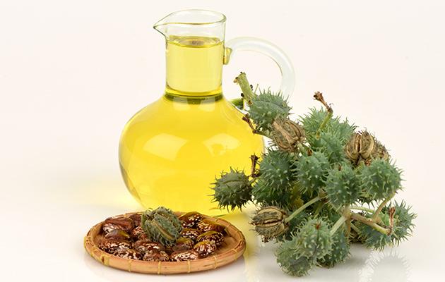 castor oil health