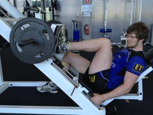 leg press health
