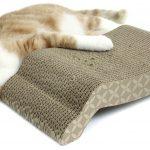 De kat ligt in de buurt van de vloerstanches van karton