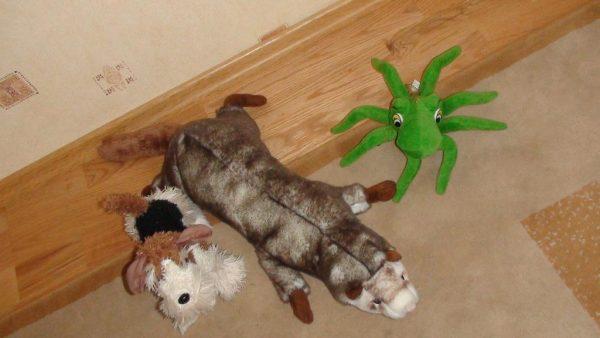 Хорёк и другие игрушки