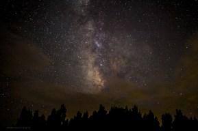 PALO DURO NIGHT STARS