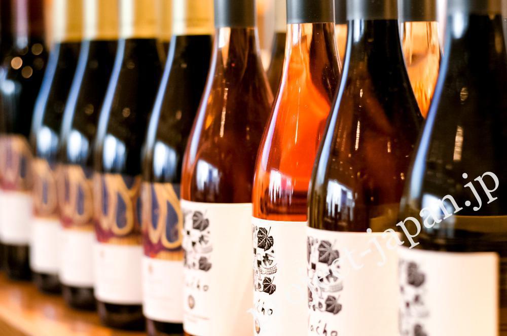 Shinshu Takayama Winery 2016