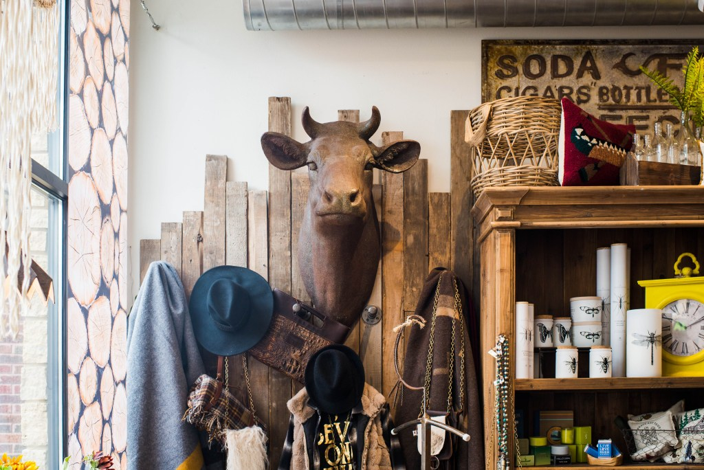 Large cow head on wall with other home decor items surrounding the space in a retail store front.