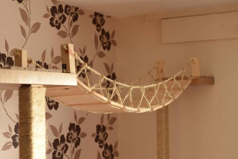 DIY Cat Rope Bridge Your ProjectsOBN