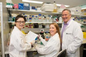 Professor Paul Hertzog (right), Dr. Ka Yee Fung (left) and Dr. Niamh Mangan (center), from the Centre for Innate Immunity and Infectious Diseases, Monash Institute of Medical Research, Monash University.
