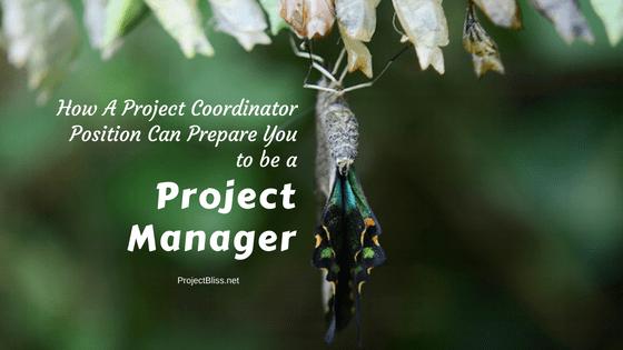Project Coordinator Job Responsibilities Prepare You as a Project ...