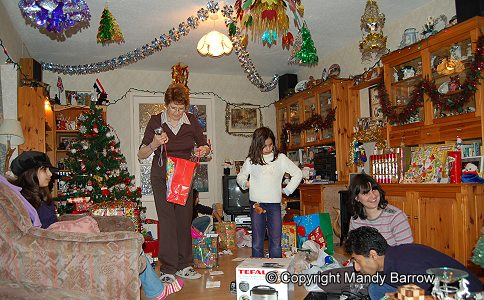 christmas decorations traditions and