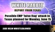 WHITE_RABBIT_EMP_TEXAS2.jpg