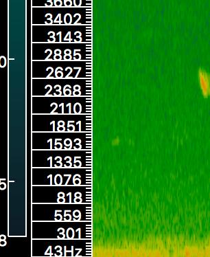 Screen Shot 2017-12-12 at 9.13.08 AM