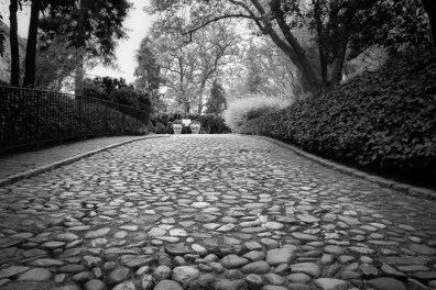 A pathway leads to places unknown in Georgetown NotSoSAHM
