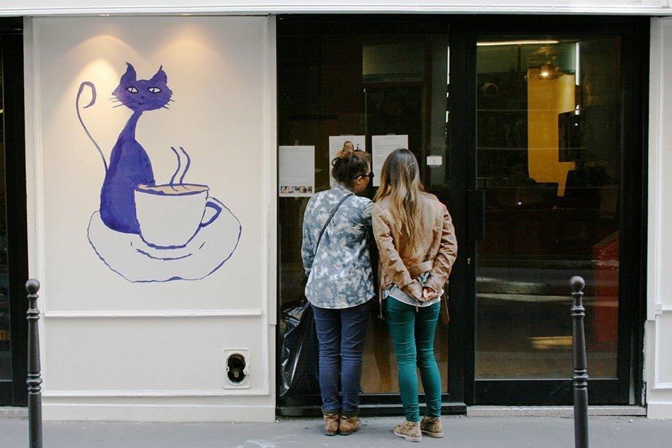Le Cafe Des Chats Rue Sedaine