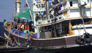 Scenes from a trawler