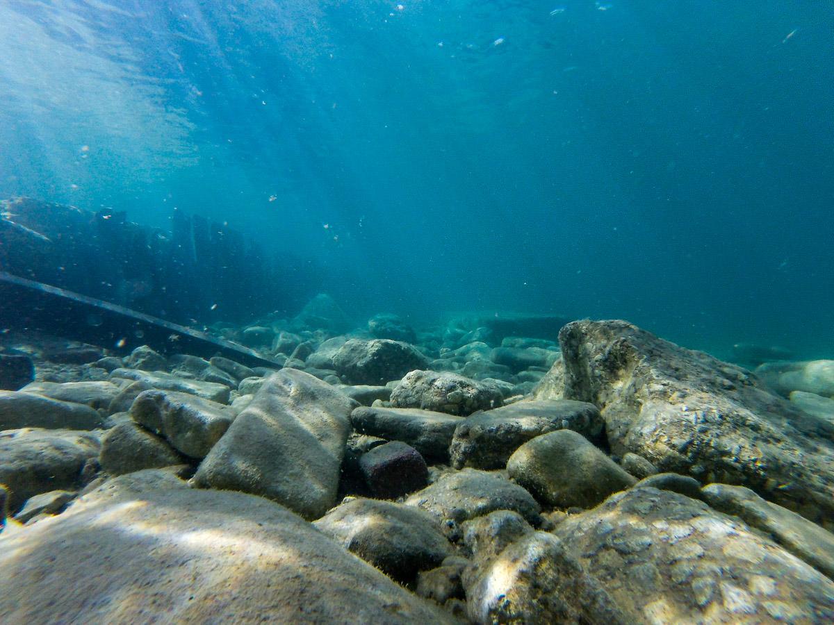Lake Michigan's Coral Reef