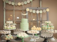 Bachelor Couple Jason and Molly Mesnick's Baby Shower