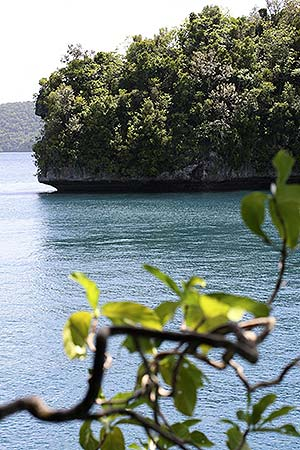 beautiful view palau islands bentprop