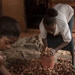 femmes cacao cameroun