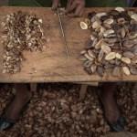 beurre Moabi Cameroun gabon
