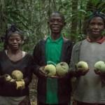 préservation ressources forestières cameroun