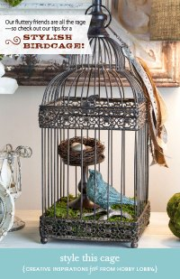 HobbyLobby Projects - Style This Cage