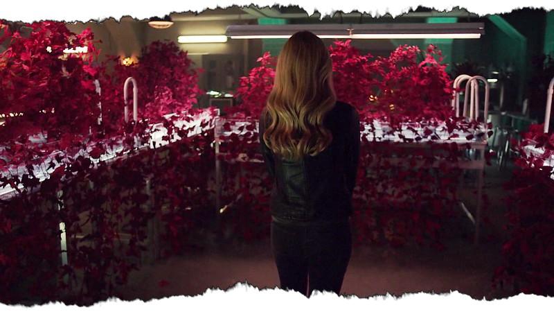 13_Cassie_PlantsLab+