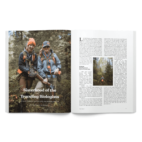 Spring 2020 Project Upland Magazine spruce grouse story